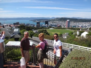 Great view of Wellington from the top of the cable car route.